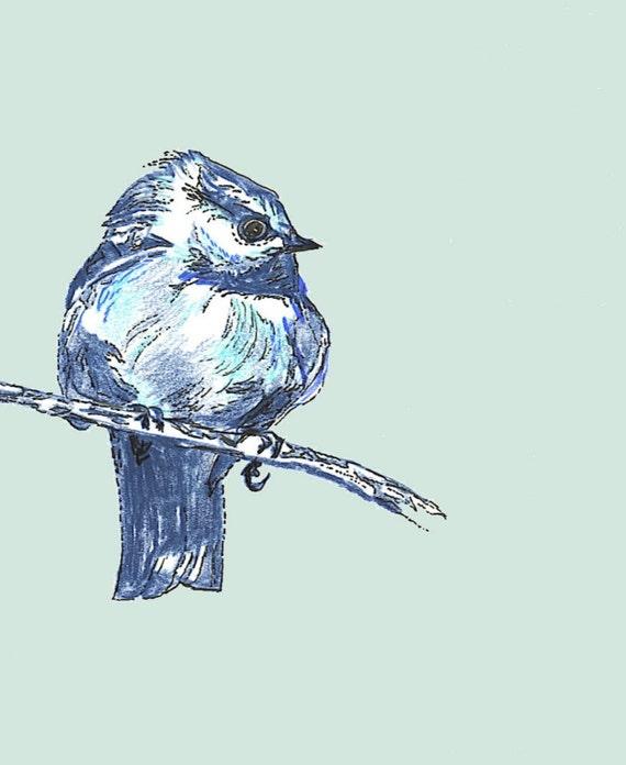 Bird Art Bird Decor Bird Drawing New Blue Bird Bird