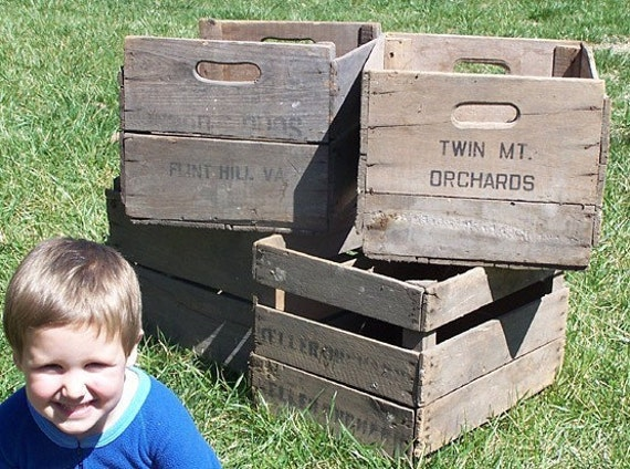 Vintage antique apple crates for Used apple crates