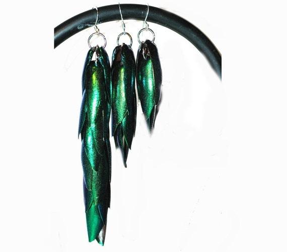 Green Beetle Wing Earrings Medium Length