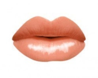 All Natural and Organic Lip Gloss Soft Coral and Gold Shimmer  Goddess Glaze(tm) in ENLIGHTEN