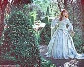 Alice in Wonderland Marie Antoinette Fantasy Gown New Style Custom