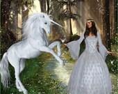 Velvet and Lace Fairy Renaissance Medieval Fantasy Wedding Gown Custom