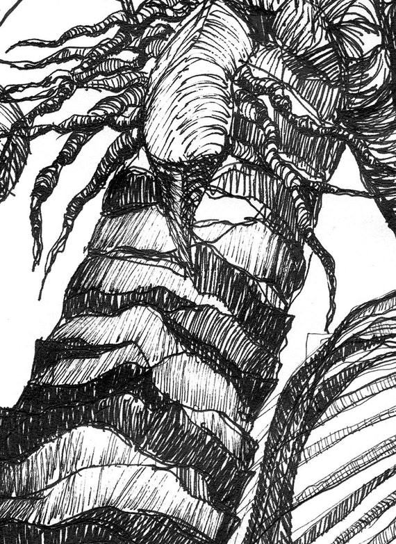 Art Pen and Ink Drawing Tropical Palm Tree with by vhmckenzie  Hawaiian Palm Tree Drawings