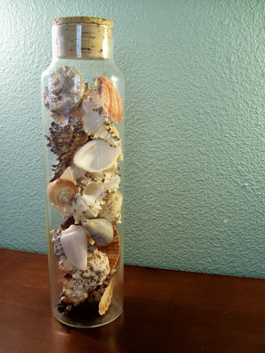 Vintage Apothecary Jar Full Of Sea Shells Glass Cork Beach