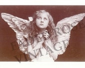 Faded Rose VINTAGE Image CHRISTMAS or Any Occasion or Blank Card (CH3) ANGEL  Package Of 10