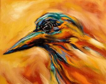 A Coloured Crow