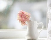 Still Life Photography, White Home Decor, Hydrangea Photo, Flower Photography, Pink Flower Photo, Fine Art Photography, Pink Nursery Art