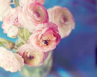 Still Life Photography - Pink Floral Ranunculus Bouquet Photo Deep Blue Pink Decor Botanical Flowers Print Nursery Art Shabby Cottage Home
