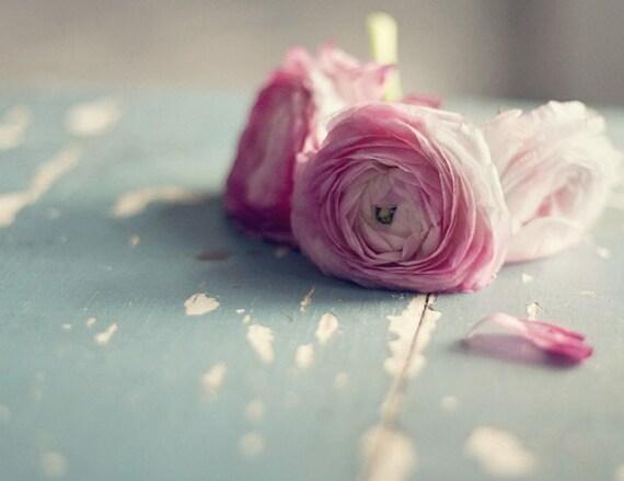 Still Life Photography - Romantic Feminine Dreamy Pink Ranunculus Print Blue Pastel Shabby Decor Still Life Fine Art Botanical Print