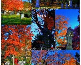 High Dynamic Range Cemetery Digital Collage Sheet JPG