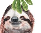 Sloth Print 8x10
