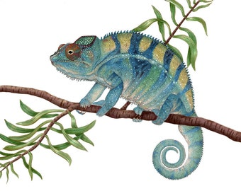 Panther Chameleon Print 8x10