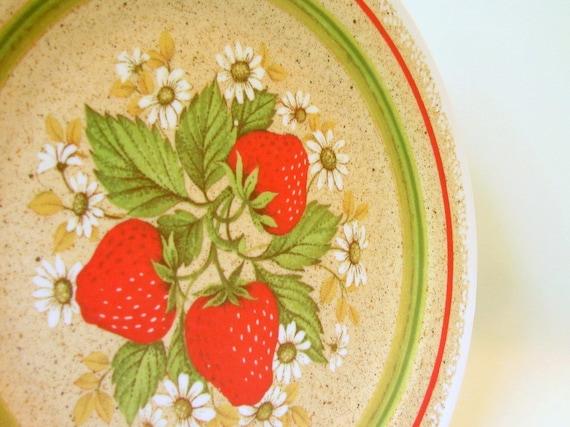 Retro Dishes Melamine Vintage Strawberry Dinner Plates for 4