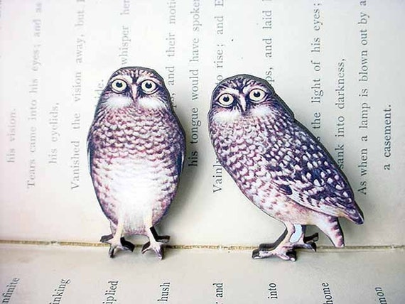 Owl Brooch Set, Woodland Pin, Vintage Illustration, Forest, Natural History