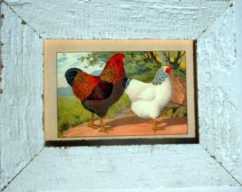 Rooster and Hen Chicken Print Recycled Wood Frame CK5