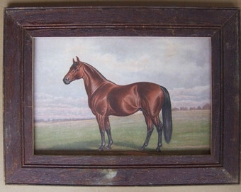 Farm Animal Horse Print Recycled Print Wood Frame HS2