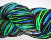 Superwash Merino Worsted Weight Hand Dyed Yarn  In a Funk Colorway
