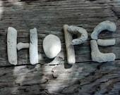 Inspirational Hope Photo Print 8X10 Seashell Coral