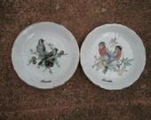 Vintage Florida Souvenir Bird Plates Sweet & Small