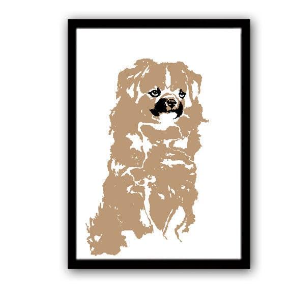 Tibetan Spaniel Dog - Fine art print