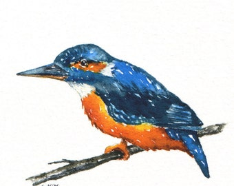 Watercolour sketch - Kingfisher - reduced to clear
