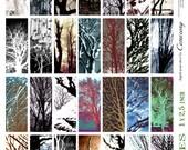 Tree Textures Digital Collage Print Sheet no244