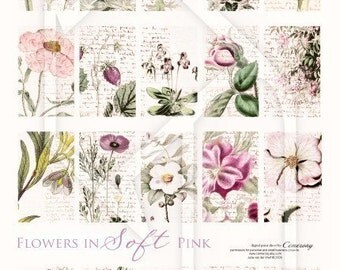 Pink Flowers Digital Collage Print Sheet no116