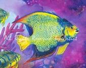Queen Angelfish Ocean Art