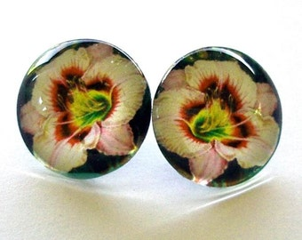 Daylily Earrings Cream Pink with Maroon Eyes Round Button Art Glass