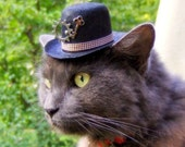 Cat or Dog Hat - Steampunk - Mysterious Victorian Scientist