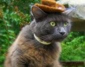 Cowboy Cat Hat - Brown Felted Mini Hat