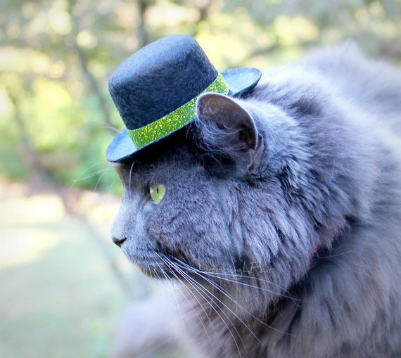 Pet Hat  Glittery Glam  Cat Hat  Small Dog Hat - Winter Celebrations Christmas Hat