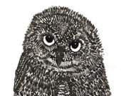Owl Noirblanc Original Ink Drawing\/Art