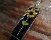 REAL flower pendant - Miniature sunflower