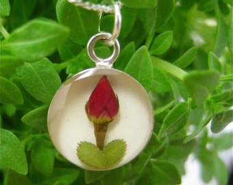 "Real Rose Pendant - round w/ white background & 18"" Sterling Silver filled chain - real flower jewelry - tween, teen, mother, floral, sweet"