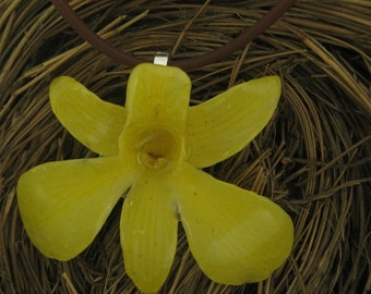 Real Orchid Necklace in Yummy Yellow - on 18 inch black cord - flower jewelry, boho, christmas, friend, coworker, sister, gift, sunflower