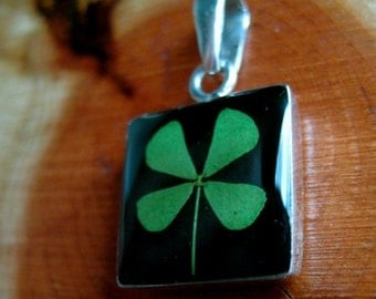 REAL 4 Leaf Clover Pendant - Black Square - four luck lucky graduation congratulations home house school job Irish Ireland green St. Patty's