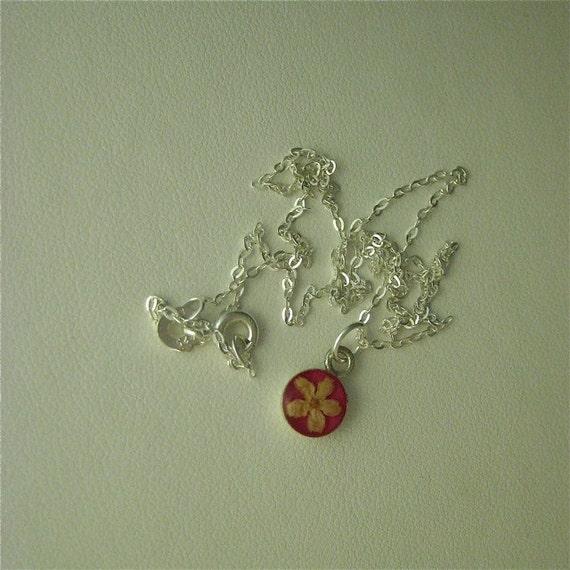 Elder Flower - Real flower pendant with pink enamel background on 16 inch sterling chain