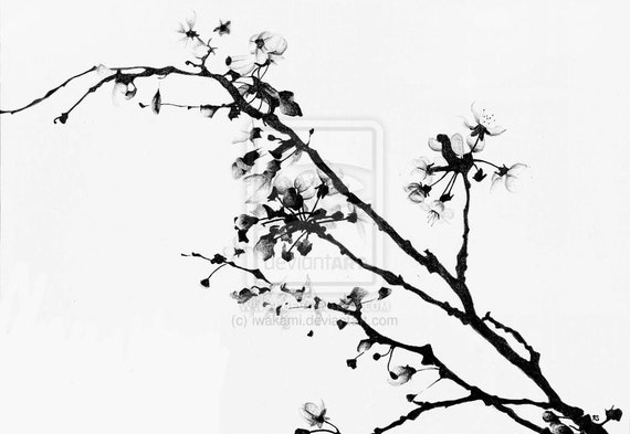 Items similar to Black and White Cherry Blossom - Print on ...