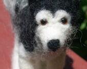 Felted Siberian Husky