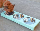 3 Bowl Pet Feeder