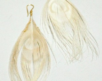 BLONDIE- peacock feather earrings