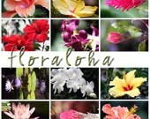 Set of 12 Hawaiian Flower Note Cards