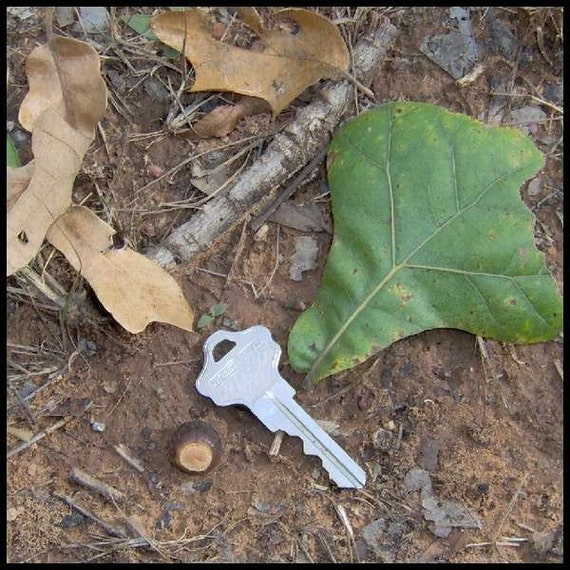 Old house key or car key geocache for Classic house keys samplephonics