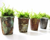 Thimbelina's Miniature Garden - Vintage Sewing Thimble Planter