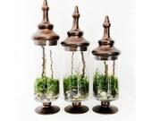 Rustic Apothecary Terrarium Set: 3 Chocolate Glass Jars