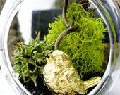 Hanging Terrarium & Air Plant Lichen: Teardrop Orb Ornament with 14k Gold Bird Figurine