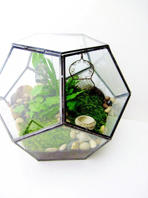 """Geometric Terrarium - Large 12"""""""