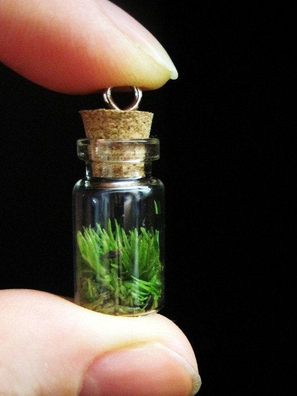 Miniature Terrarium Pendant
