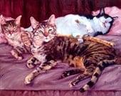 """California Dreamin', custom Cat Paintings in Oils, 12x16"""", 3 pets"""